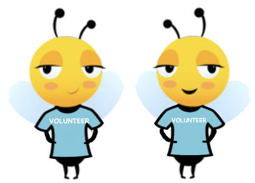 become a volunteer wasp